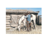 If these walls could talk, Mikel Donahue, Western Artist