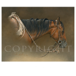 Buckaroo, Mikel Donahue, Western Artist