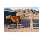 Easy keeper, western artist, Mikel Donahue