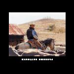 Hatbrand cowboys, western artist, Mikel Donahue