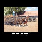 Bundle wagon, western artist, Mikel Donahue