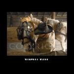 winters work, western artist, Mikel Donahue