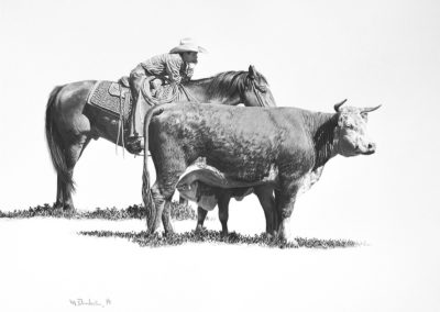 Day Herding 16_x21_ Colored Pencil